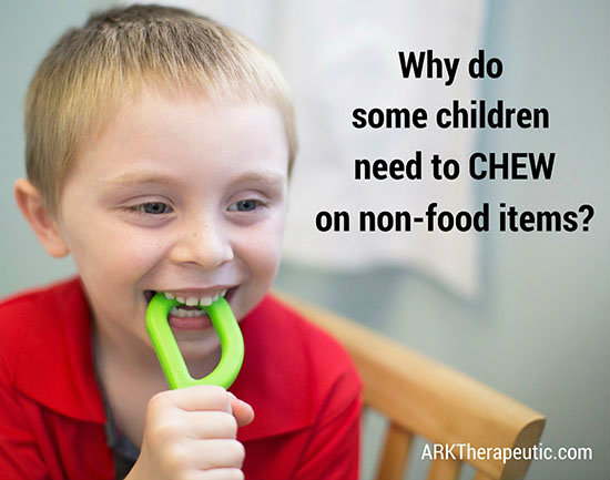 Why Does My Older Child Chew On Everything - Ark Therapeutic-2422