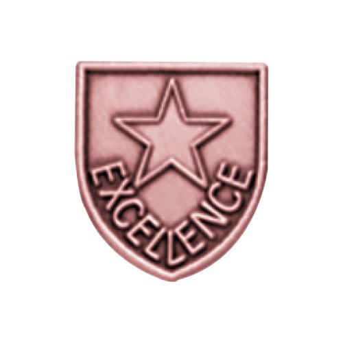Medal Insert - Excellence (Bronze)
