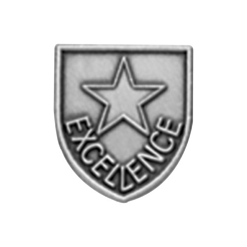 Medal Insert - Excellence (Silver)