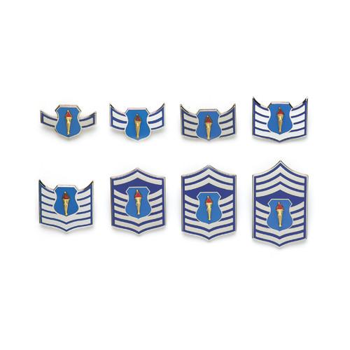 Cadet Airman Insignia