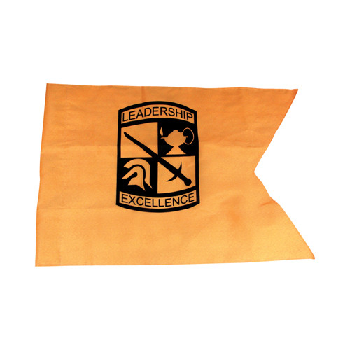 Cadet Command Double Guidon