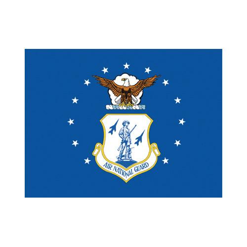 Air National Guard Flag