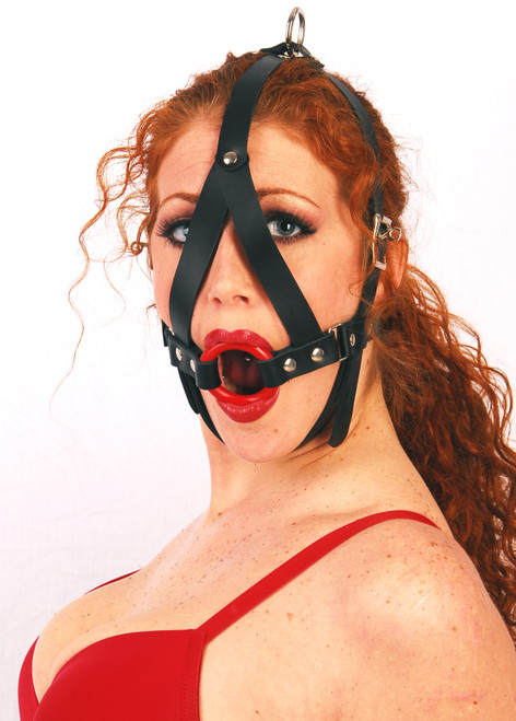 Ring Gag Harness
