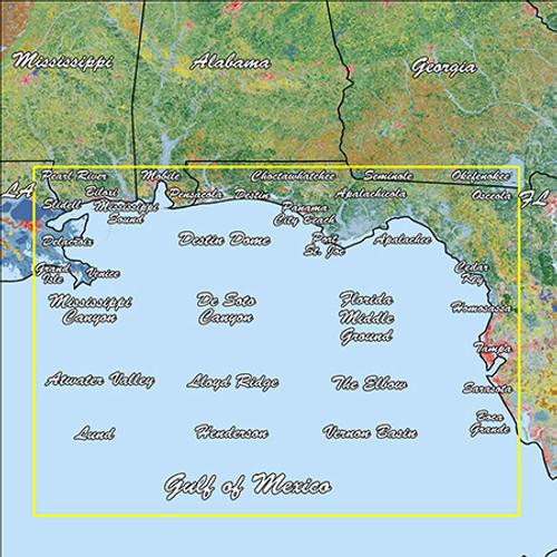 Garmin Gulf Coast Standard Mapping Professional