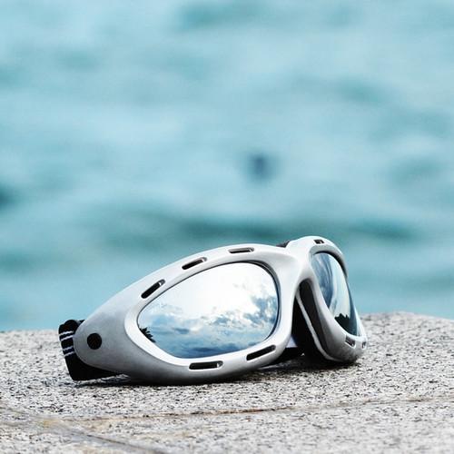Classic Silver Frame/Smoke Lens Goggles PWC Eyewear