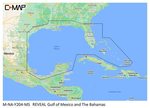C-map Reveal Coastal Gulf Of Mexico And Bahamas