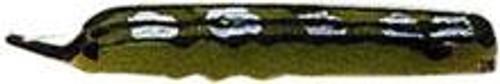 Creme Catalpa Worm 2ct