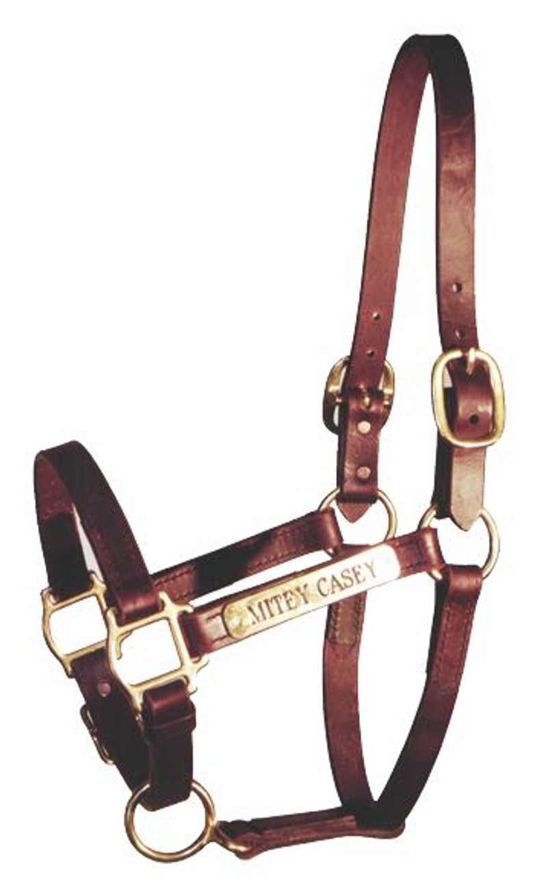Horse Fare Leather Halter with Solid Brass Hardware /& Customized Nameplate Made in The USA