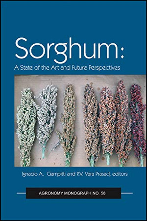 Sorghum: State of the Art and Future Perspectives (Agronomy Monographs)