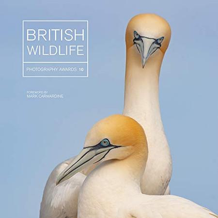 British Wildlife Photography Awards 10