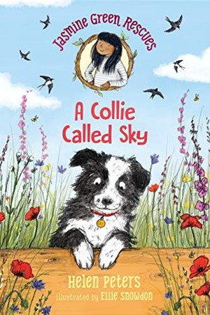 Jasmine Green Rescues: A Collie Called Sky