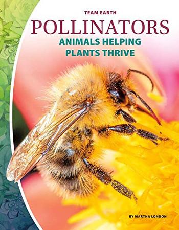 Pollinators (Team Earth)