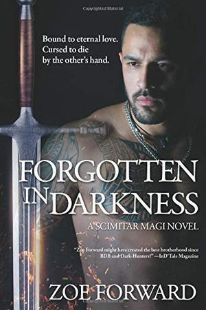 Forgotten In Darkness (Scimitar Magi)