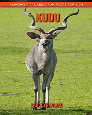 kudu: Amazing Pictures & Fun Facts for Kids