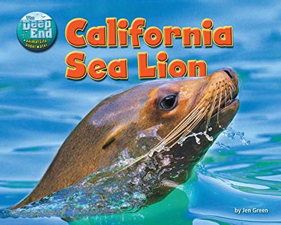 California Sea Lion (Deep End: Animal Life Underwater)