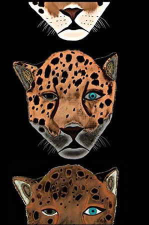 Mindbook: Jaguars - Hardcover
