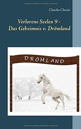 Verlorene Seelen 9 - Das Geheimnis von Drömland (German Edition)
