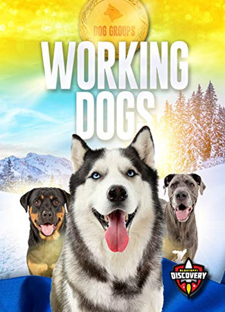 Working Dogs (Dog Groups)