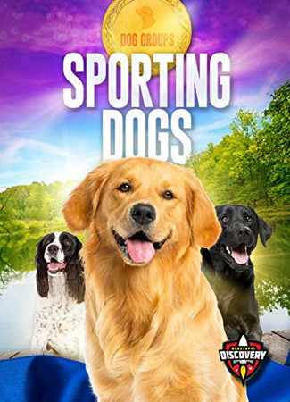 Sporting Dogs (Dog Groups)