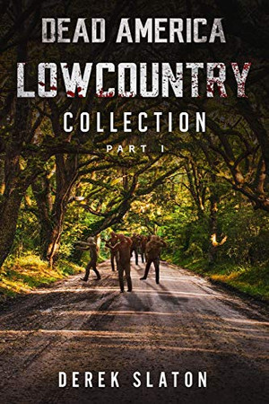Dead America Lowcountry Collection Part 1 - Books 1 - 6 (Dead America - Lowcountry Collections) - Paperback