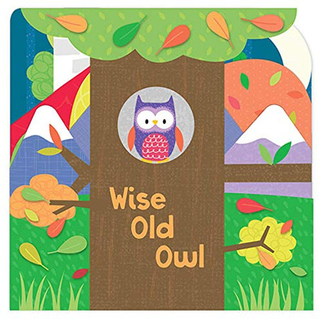 Wise Old Owl-Dreamy Nighttime Scenes, Playful Rhymes and Fun Shaped Pages make this a Perfect Gift for Babies and Toddlers (Layered Board Book)