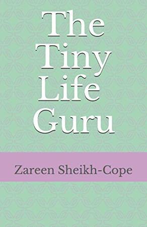 The Tiny Life Guru