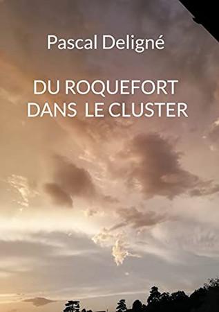 Du Roquefort Dans Le Cluster (French Edition)