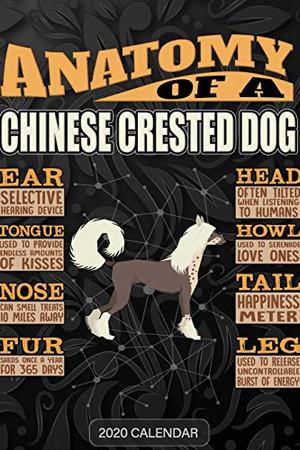 Anatomy Of A Chinese Crested Dog: Chinese Crested Dog 2020 Calendar - Customized Gift For Chinese Crested Dog Dog Owner