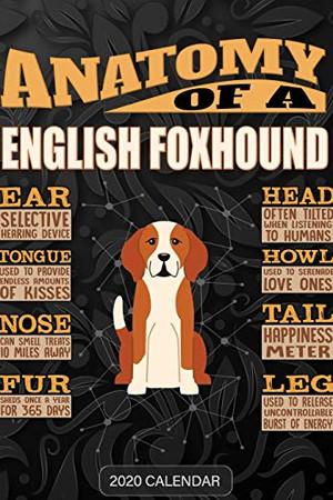 Anatomy Of A English Foxhound: English Foxhound 2020 Calendar - Customized Gift For English Foxhound Dog Owner