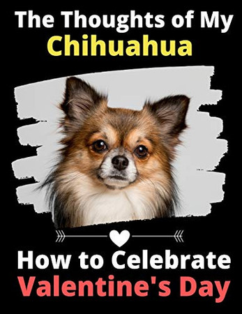The Thoughts of My Chihuahua: How to Celebrate Valentine's Day