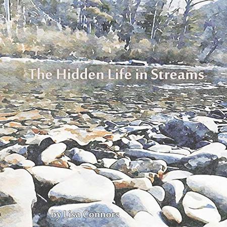 The Hidden Life in Streams
