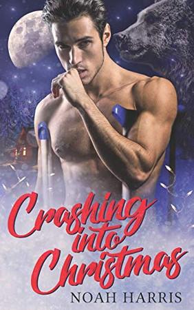 Crashing Into Christmas: A Christmas story