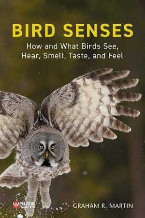Bird Senses: How What Birds See, Hear