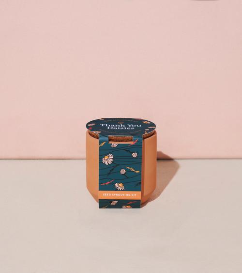 Thank You Daisies Terracotta Kit