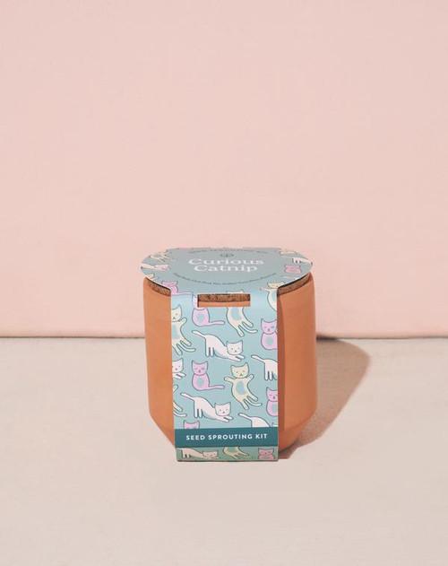 Curious Catnip Terracotta Kit