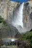 ヨセミテ国立公園1日観光 - 子供