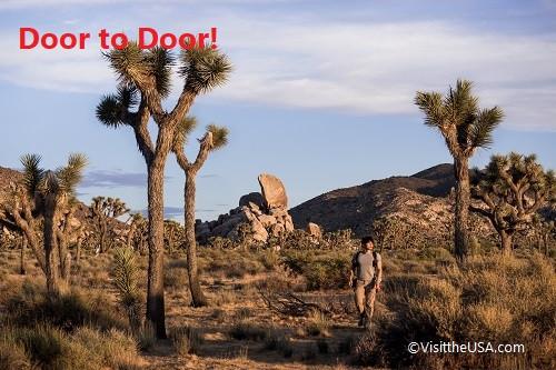 Door to Door! ジョシュアツリー国立公園とアウトレット1日観光