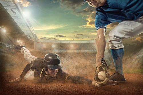 野球観戦ツアー(タンパベイR)