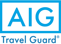 AIG 旅行保険