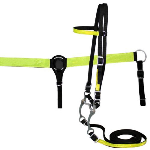 Showman ® nylon headstall and breast collar set with reflector strips.