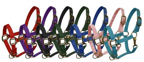 Pony size nylon halter is constructed of triple ply nylon with brass hardware. Has eyelets on crown and adjustable nose and throat latch.