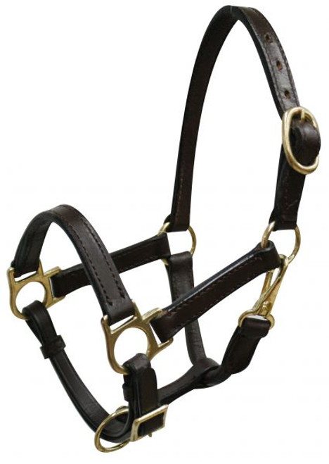 Mini size leather halter with brass hardware.  Comes with double buckles on crown, adjustable nose and throat latch.