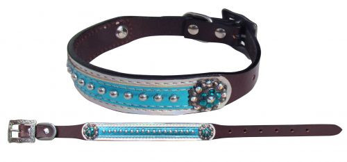 Showman Couture ™ Genuine leather dog collar with metallic teal overlay.