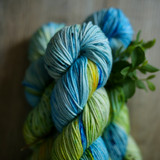 Forget Me Knot Hand Dyed DK Yarn