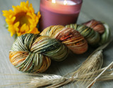 Patchwork Quilt Worsted Hand Dyed Yarn 2