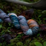 Butterfly Hand Dyed DK Yarn