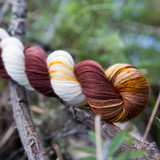 Bald Eagle Hand Dyed Yarn