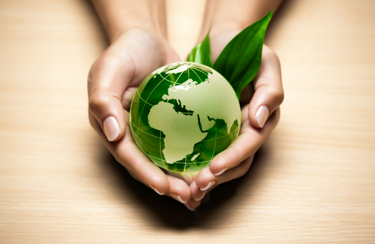 Becoming a Green Guru is Easier than You Might Think!