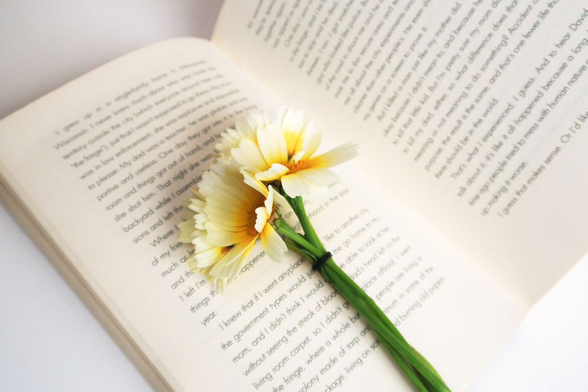 Top Education Books for Spring - What's Trending?