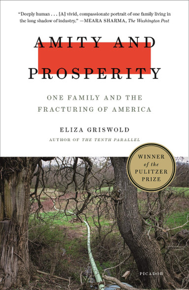 Amity and Prosperity: One Family and the Fracturing of America Cover